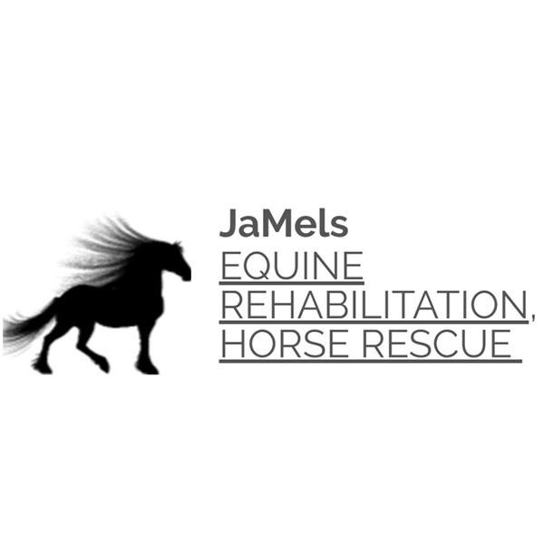 Jamels Equine Rehabilitation & Horse Rescue