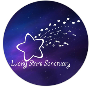 Lucky Stars Sanctuary