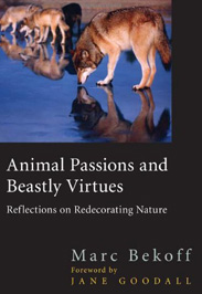 Animal Passions and Beastly Virtues - Marc Bekoff