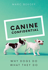 Canine Confidential - Marc Bekoff