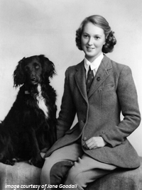 Jane Goodall & Her Dog Rusty - click to enlarge...