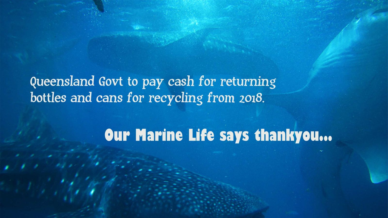 Cash for Cans - Qld recycling 2018