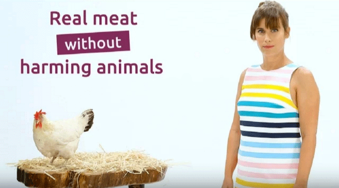 Super Meat - Real meat without harming animals