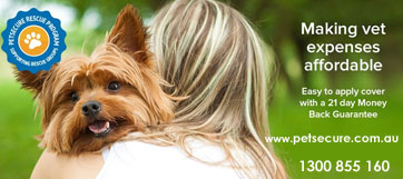 Pet Insurance for Dogs and Cats - Pet Secure