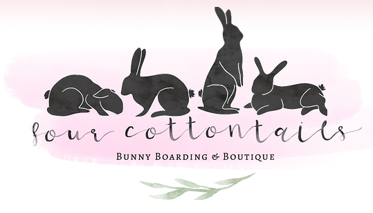 Bunny Boarding Sydney - Four Cotton Tails