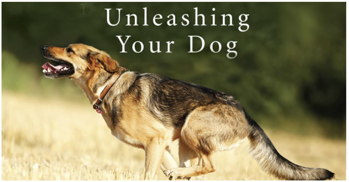 Unleashing Your Dog - Mark Bekhoff